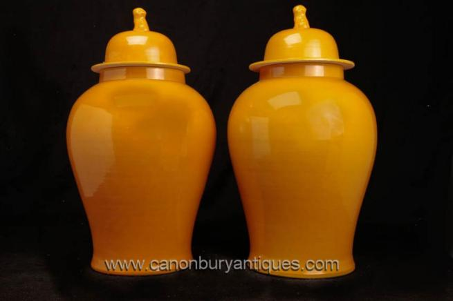 Pair Chinese Pottery Ginger Jars Vases Urns Foo Dogs Porcelain