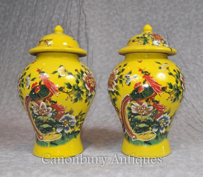 Pair Chinese Ming Porcelain Ginger Urns Temple Jars Birds of Paradise