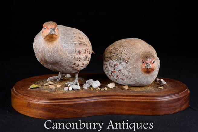 Pair Victorian Hand Carved Partridge Game Bird Statues 1880